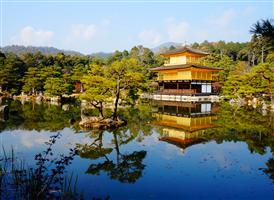 <오사카 자유 3일> 컴포트 호텔 오사카 신사이바시/ 에코노미 더블/ 조식포함