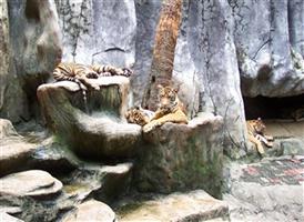 호랑이공원