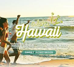 하와이에 빠지다