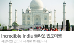 인도-Incredible India Best Of Best