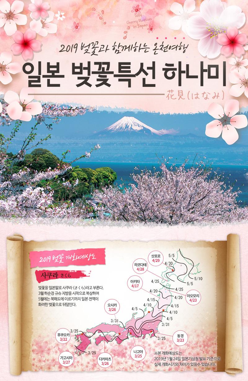 2014 벚꽃과 함께하는 쇼핑여행 일본 벚꽃특선 하나미
