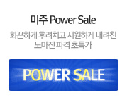 미주 Power Sale