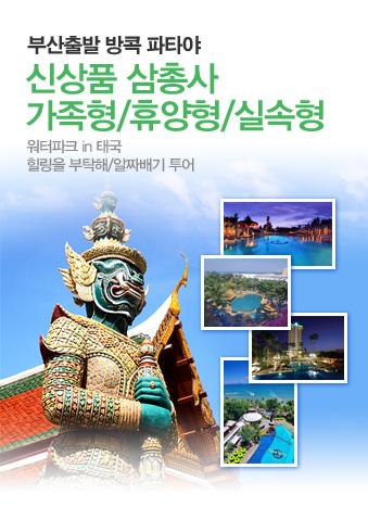 신상품 삼총사 가족형/휴양형/실속형