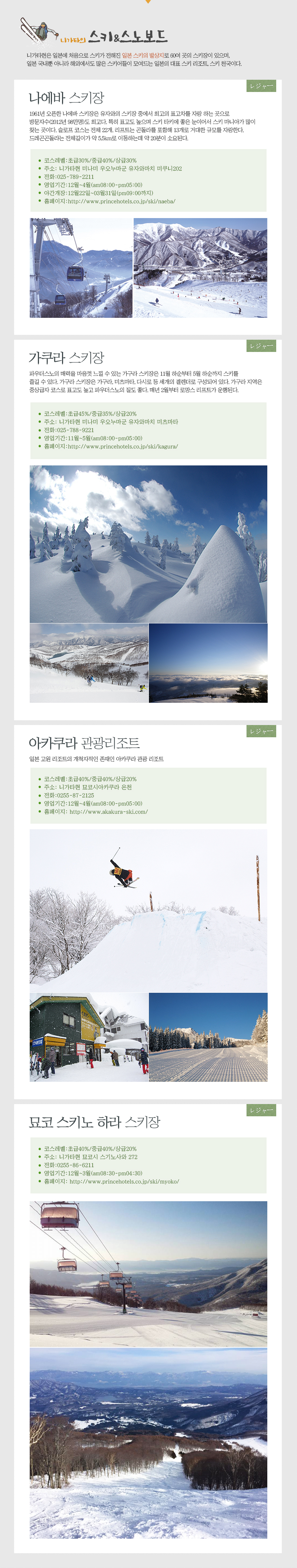 니가타의 스키