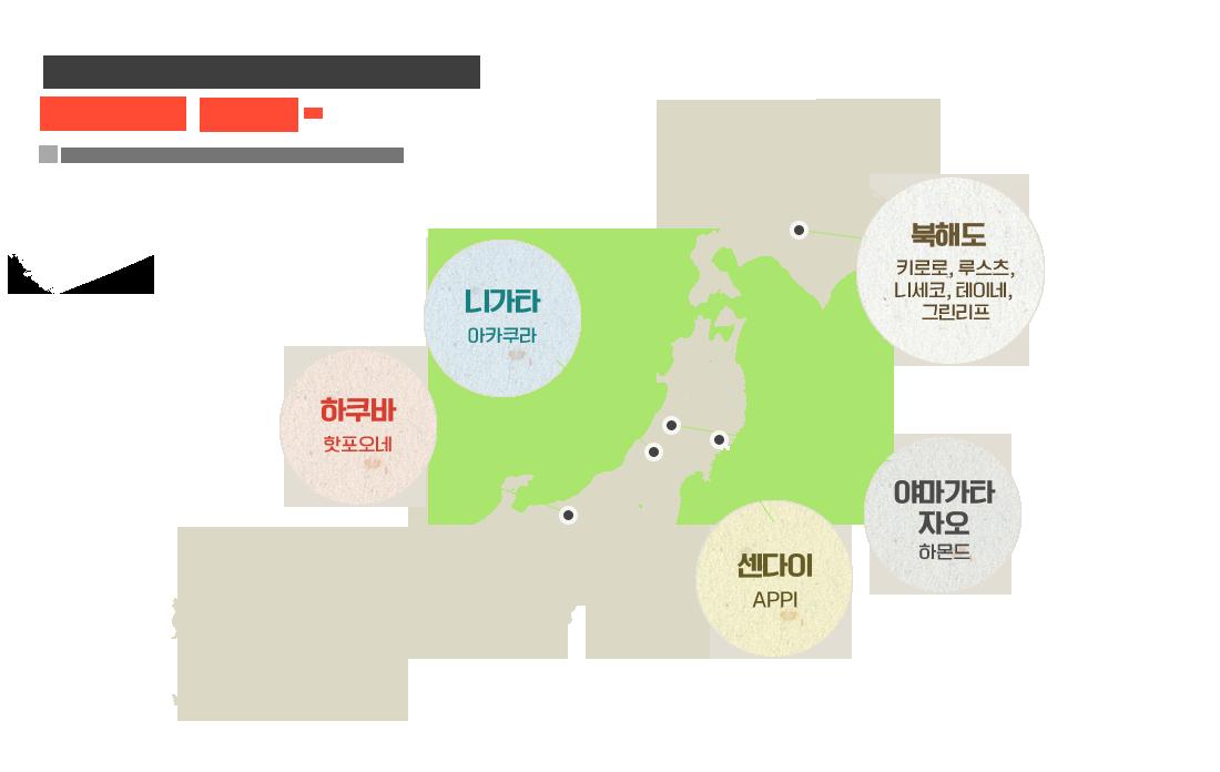 일본지역별 매력만점 스키장