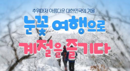 대한민국 대표 눈꽃 여행지